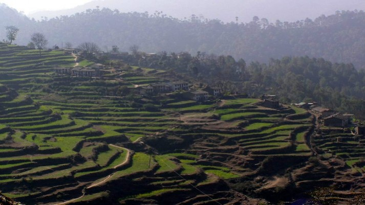 internaTerraced fields on way to Alai Village