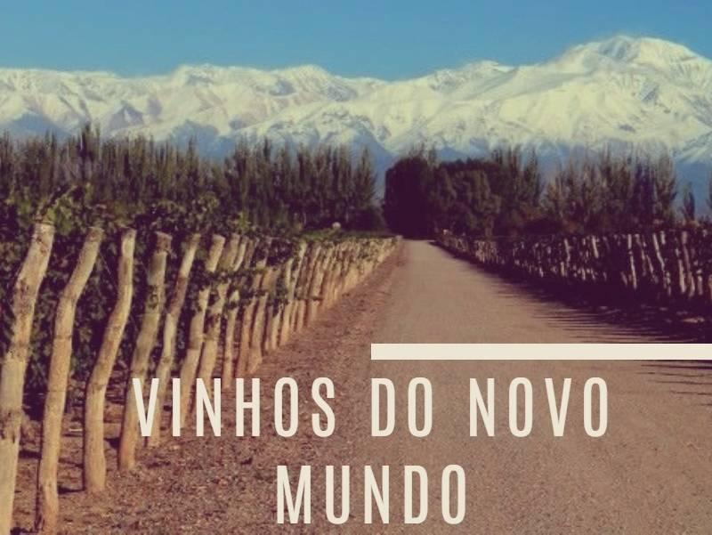 mandoza vinhos do novo mundo