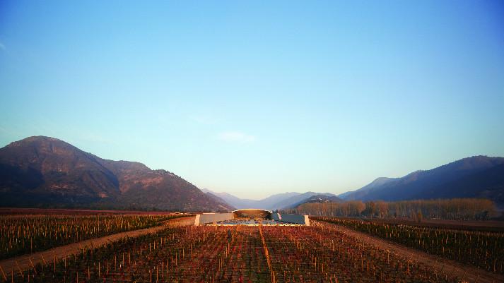 the-winery-at-vik-0385