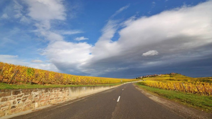 Open-Roads-In-Alsace-766x460