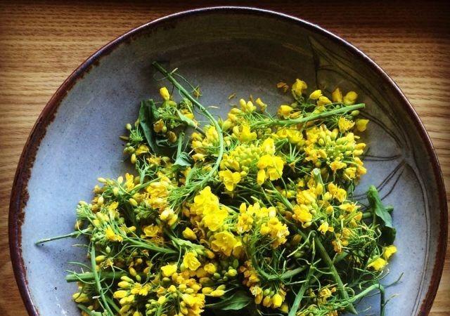 flores de brócolis